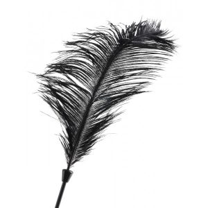 Love Plumes