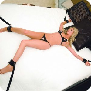 Lux Fetish Bed Spreader Kit